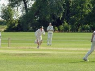 Campaign for Real Gin cricketers in action